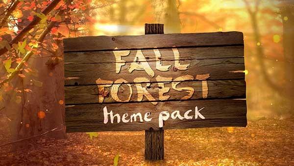 fall church media forest