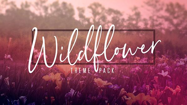 Wildflower_600