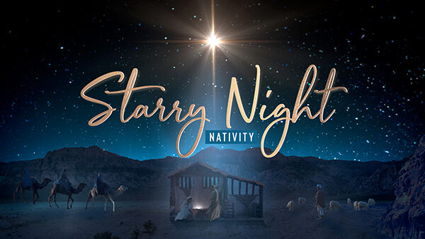 christmas starry night nativity