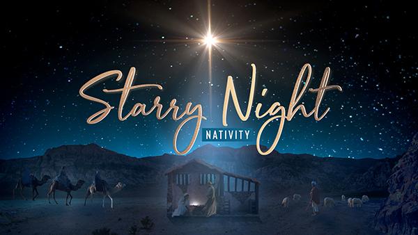 christmas starry night nativity