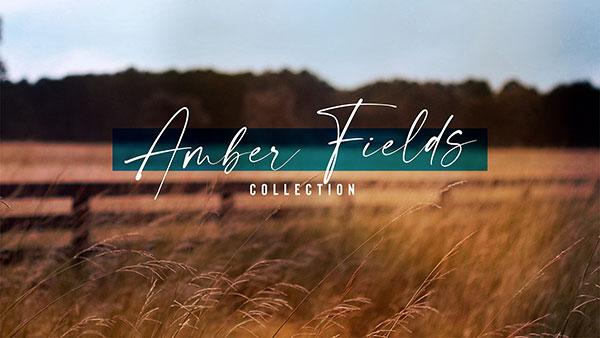 Amber_Fields_600